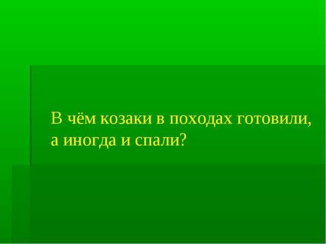 В чём козаки в походах готовили, а иногда и спали?