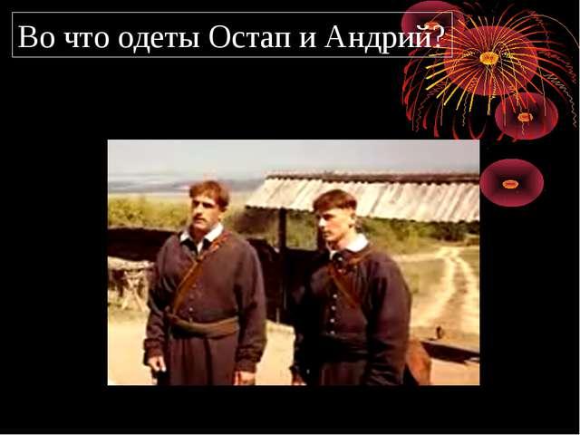 Во что одеты Остап и Андрий?