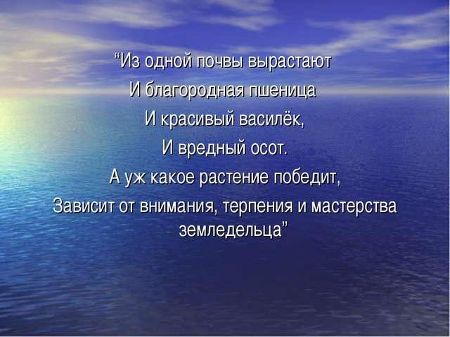 """""""Из одной почвы вырастают И благородная пшеница И красивый василёк, И вредный..."""