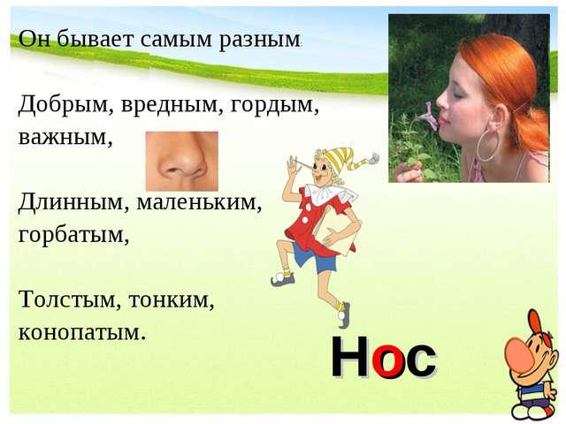 Нос Он бывает самым разным: Добрым, вредным, гордым, важным, Длинным, маленьк...