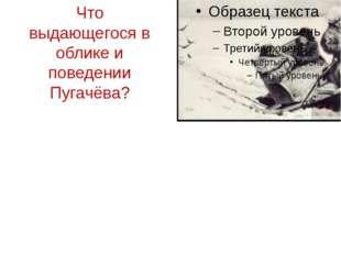 Что выдающегося в облике и поведении Пугачёва?