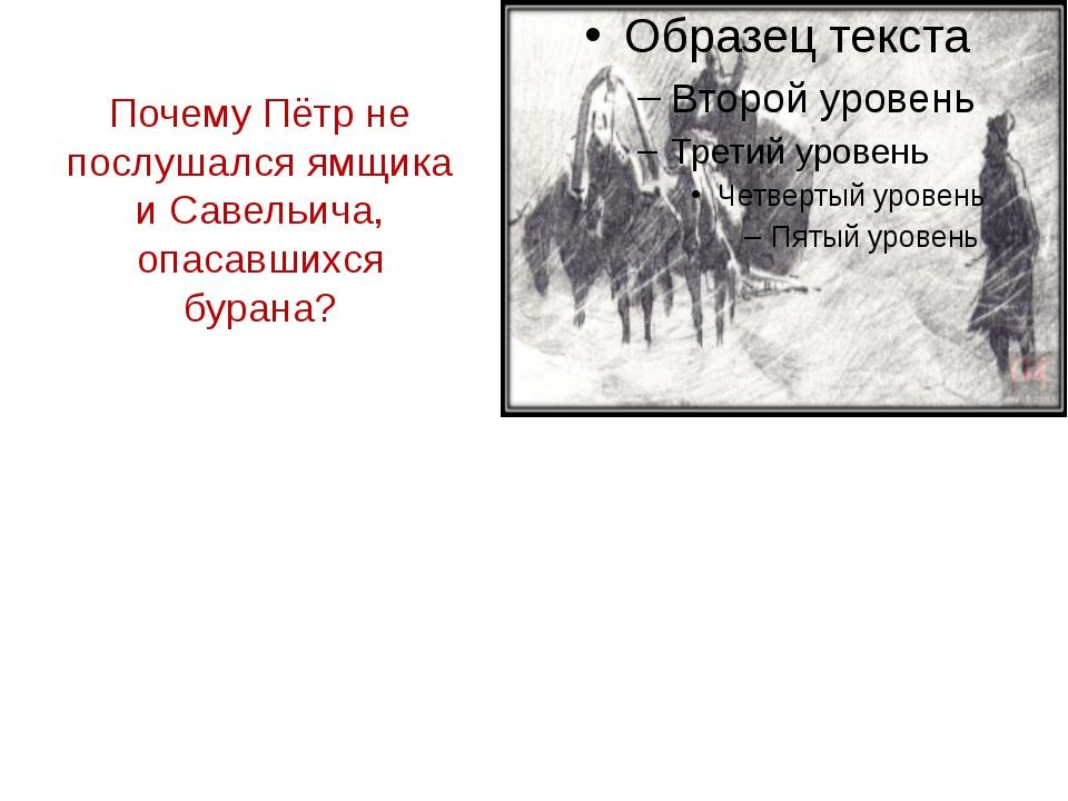 Почему Пётр не послушался ямщика и Савельича, опасавшихся бурана?