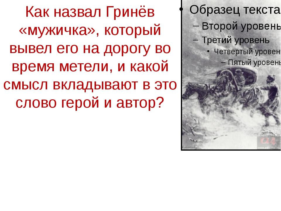Как назвал Гринёв «мужичка», который вывел его на дорогу во время метели, и к...