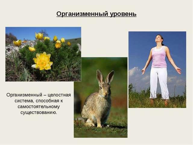 Организменный уровень Организменный – целостная система, способная к самостоя...