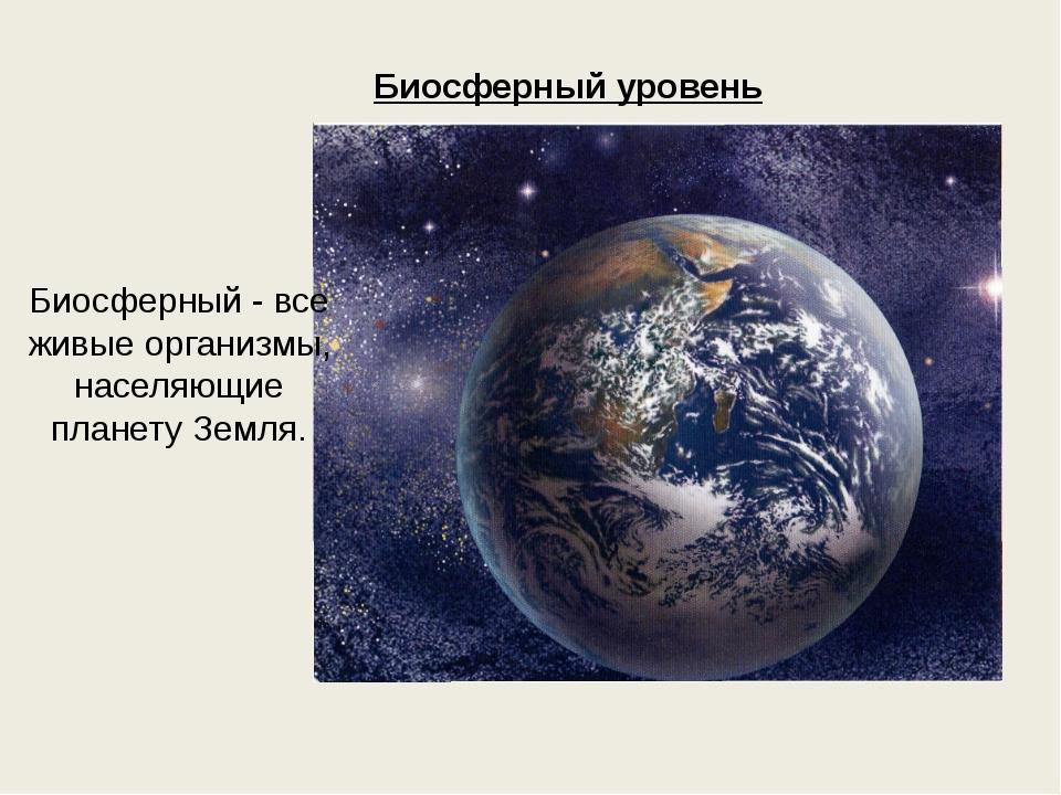 Биосферный уровень Биосферный - все живые организмы, населяющие планету Земля.