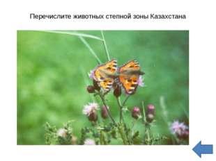 Перечислите животных степной зоны Казахстана