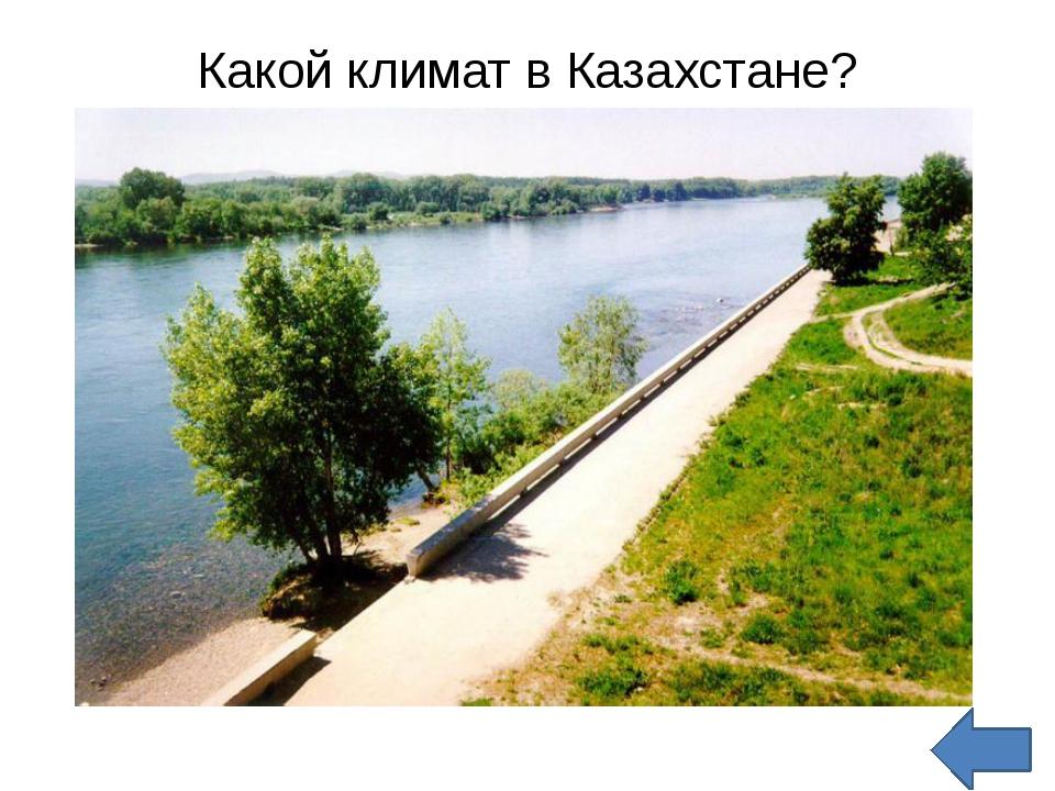 Какой климат в Казахстане?