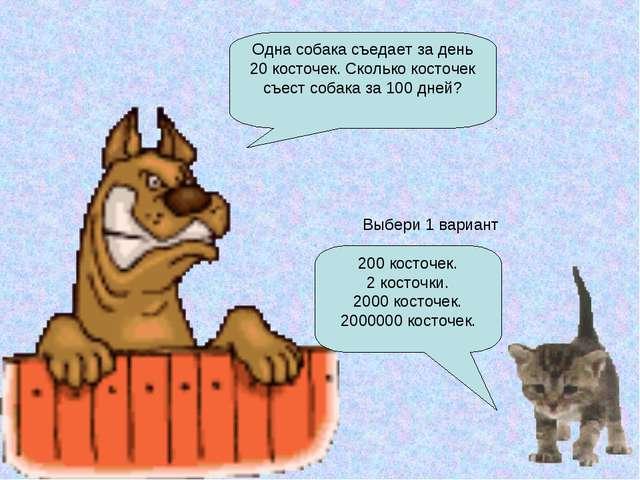 Одна собака съедает за день 20 косточек. Сколько косточек съест собака за 100...