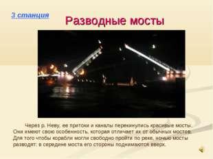 3 станция Разводные мосты Через р. Неву, ее притоки и каналы перекинулись кра
