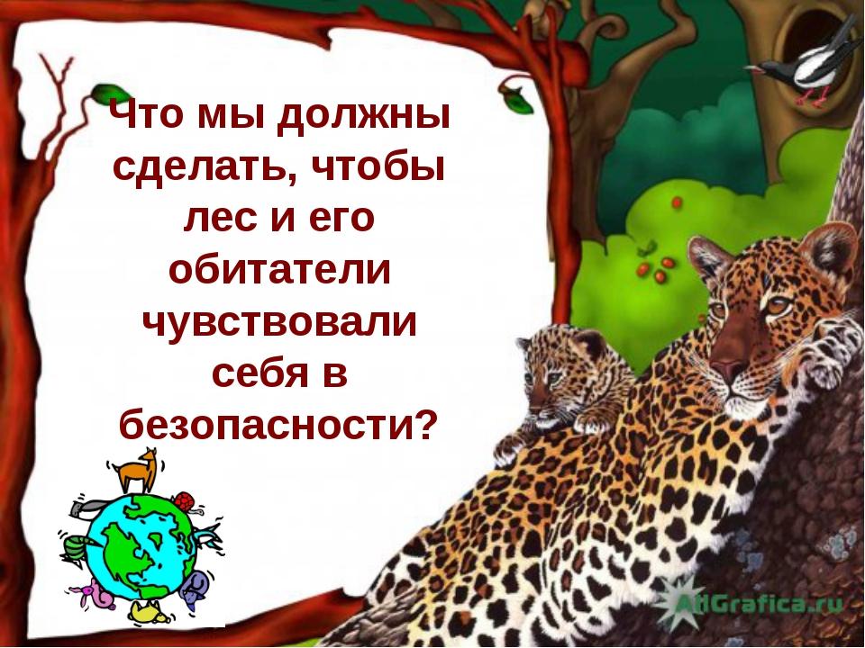 Что мы должны сделать, чтобы лес и его обитатели чувствовали себя в безопасно...