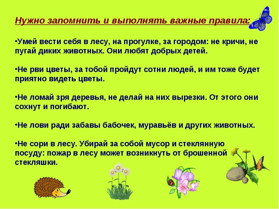 Нужно запомнить и выполнять важные правила: Умей вести себя в лесу, на прогул...