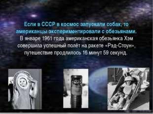Если в СССР в космос запускали собак, то американцы экспериментировали с обез