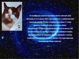 18 октября все кошачье население Земли отмечает свой праздник. В этот день в