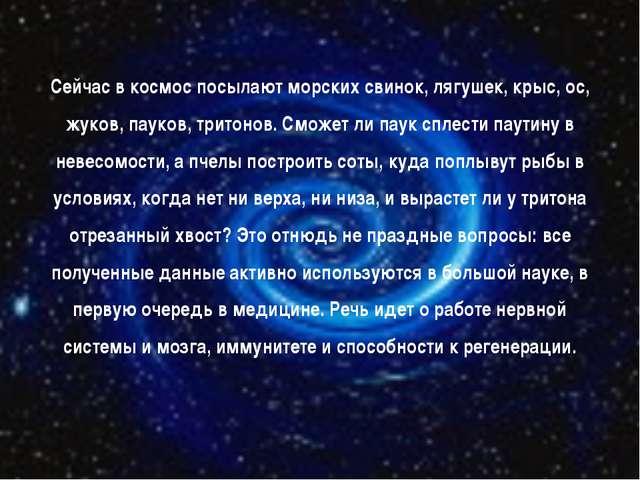 Сейчас в космос посылают морских свинок, лягушек, крыс, ос, жуков, пауков, тр...