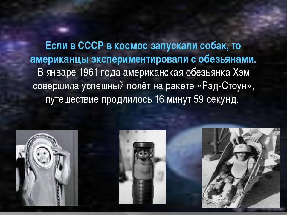 Если в СССР в космос запускали собак, то американцы экспериментировали с обез...