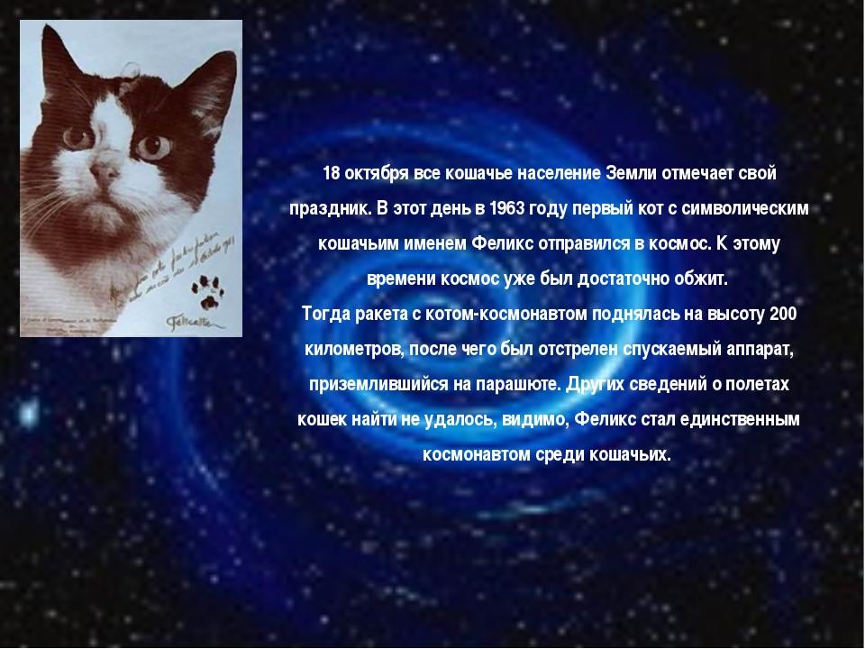 18 октября все кошачье население Земли отмечает свой праздник. В этот день в...