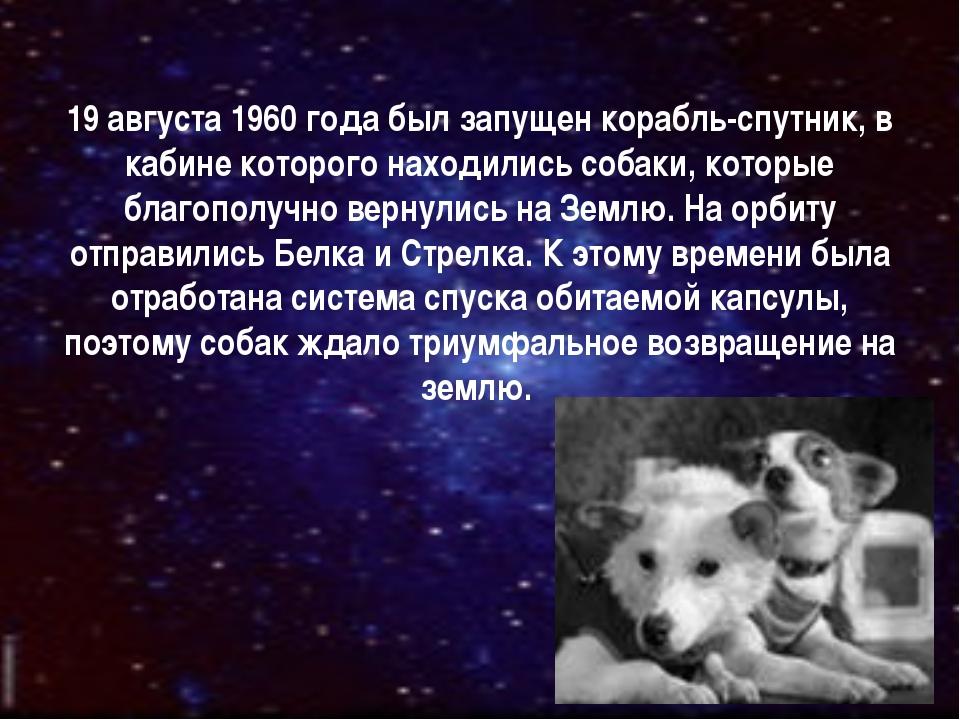 19 августа 1960 года был запущен корабль-спутник, в кабине которого находилис...