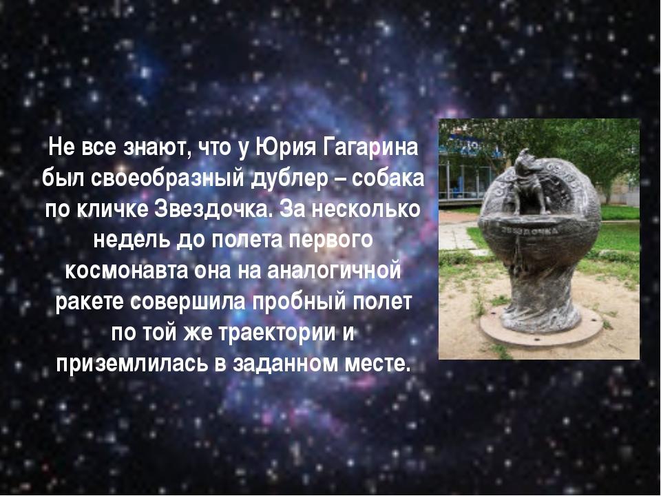 Не все знают, что у Юрия Гагарина был своеобразный дублер – собака по кличке...