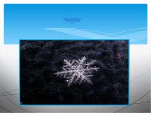 Кружатся снежинки в воздухе морозном. Падают на землю кружевные звёзды. Вот