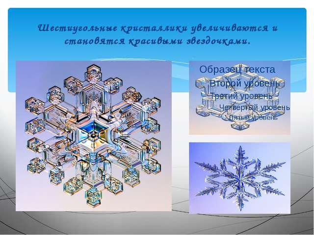 Шестиугольные кристаллики увеличиваются и становятся красивыми звездочками.