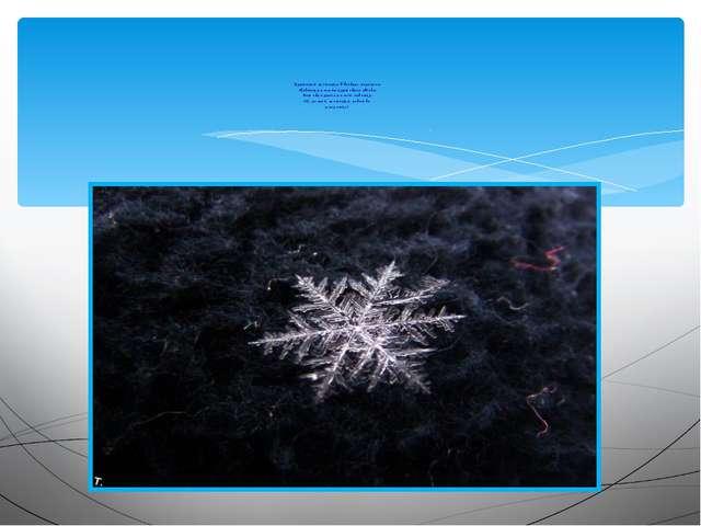 Кружатся снежинки в воздухе морозном. Падают на землю кружевные звёзды. Вот...