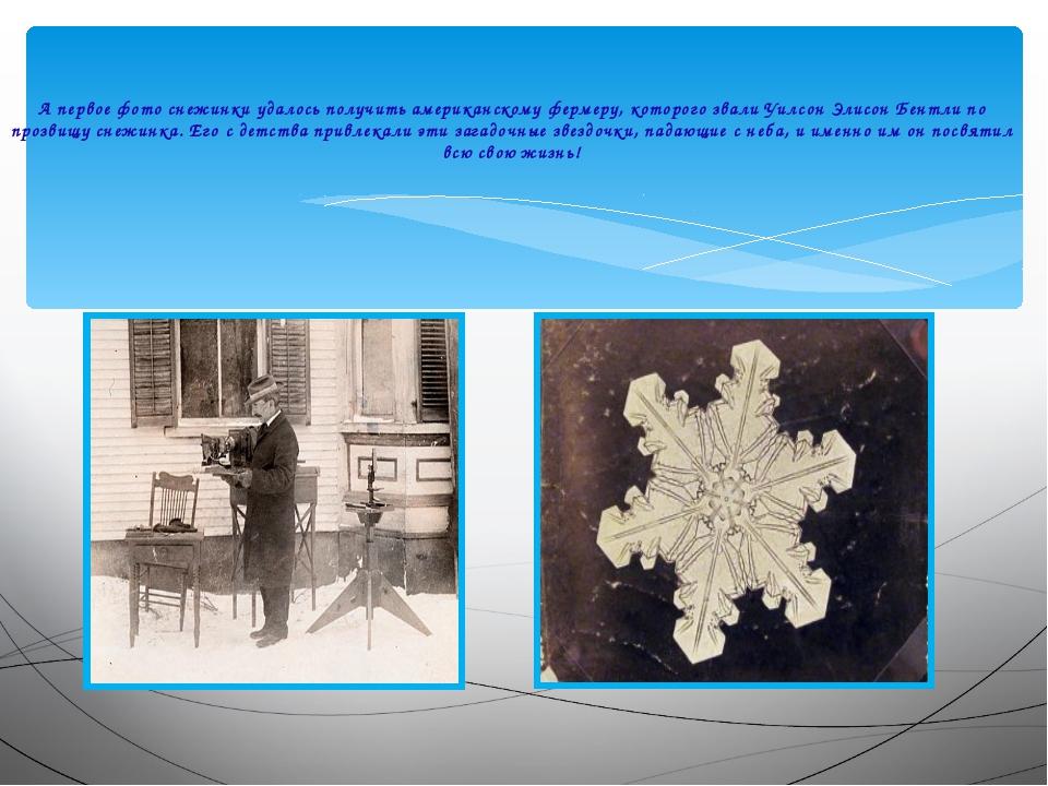 А первое фото снежинки удалось получить американскому фермеру, которого звал...