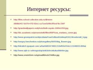 Интернет ресурсы: http://files.school-collection.edu.ru/dlrstore/d80bb457-b07