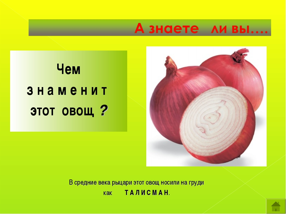 Чем з н а м е н и т этот овощ ? В средние века рыцари этот овощ носили на гр...