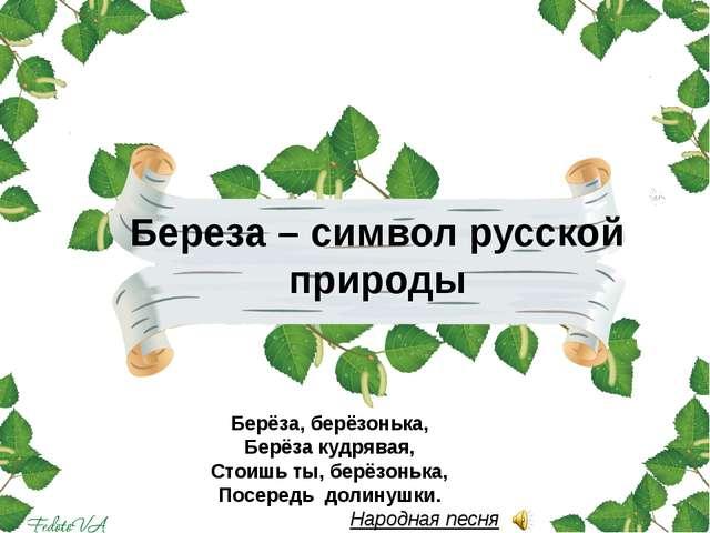 Береза – символ русской природы Берёза, берёзонька, Берёза кудрявая, Стоишь т...