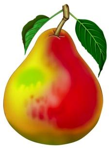 http://trademarket.n4.biz/image/layout_set_logo?img_id=3164963&t=1339802021335
