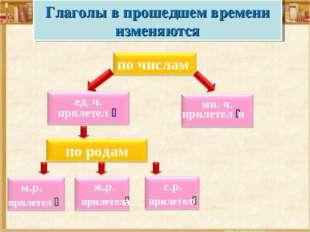 прилетел  прилетел  и Глаголы в прошедшем времени изменяются с.р. прилетел
