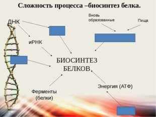 БИОСИНТЕЗ БЕЛКОВ тРНК иРНК Аминокислоты Энергия (АТФ) Ферменты (белки) рРНК Д