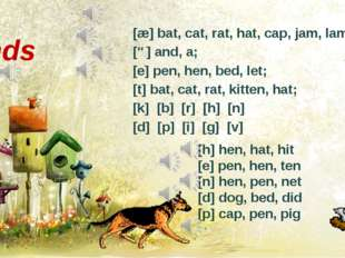 [æ] bat, cat, rat, hat, cap, jam, lamp; [ə] and, a; [e] pen, hen, bed, let; [