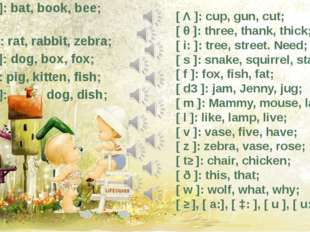 [ b ]: bat, book, bee; [ г ]: rat, rabbit, zebra; [ ɔ ]: dog, box, fox; [ i ]