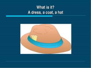 What is it? A dress, a coat, a hat