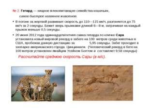 № 2. Гепард — хищноемлекопитающеесемействакошачьих, самое быстрое наземное