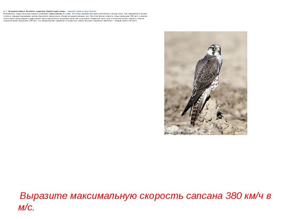 № 3. За звание самого быстрого существа борются две птицы– черный стриж ис...