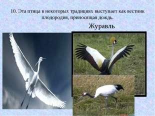 10. Эта птица в некоторых традициях выступает как вестник плодородия, принося