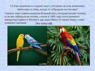 12.Как называли в старину кнут, которым пугали домашних животных и птиц, когд