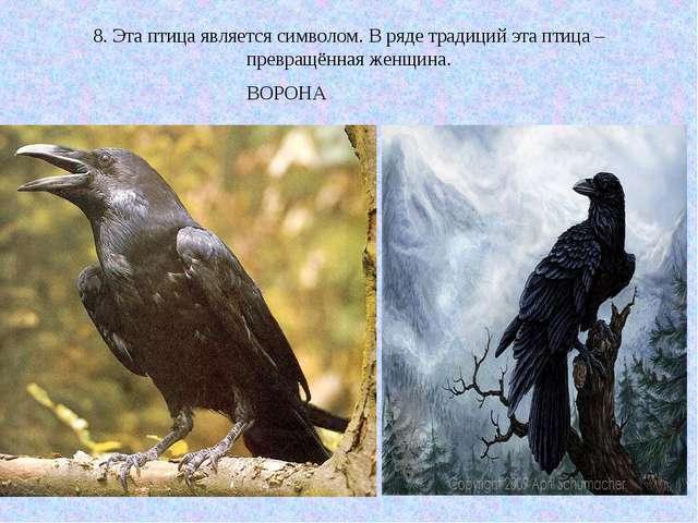 8. Эта птица является символом. В ряде традиций эта птица – превращённая женщ...