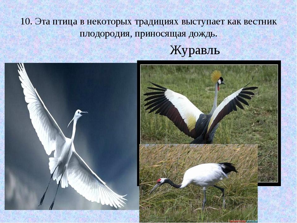 10. Эта птица в некоторых традициях выступает как вестник плодородия, принося...
