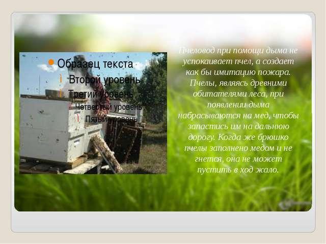 Пчеловод при помощи дыма не успокаивает пчел, а создает как бы имитацию пожа...