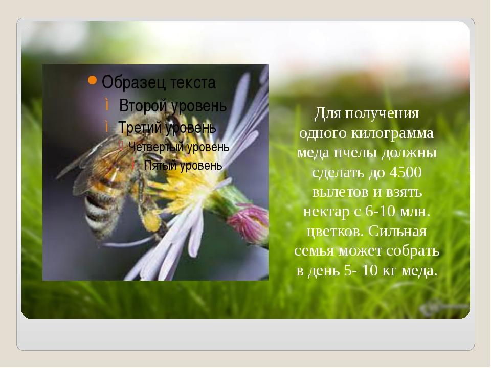 Для получения одного килограмма меда пчелы должны сделать до 4500 вылетов и...