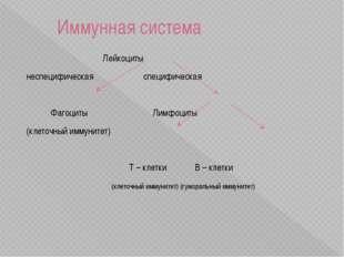 Иммунная система объединяет органы и клетки, защищающие организм от заболева