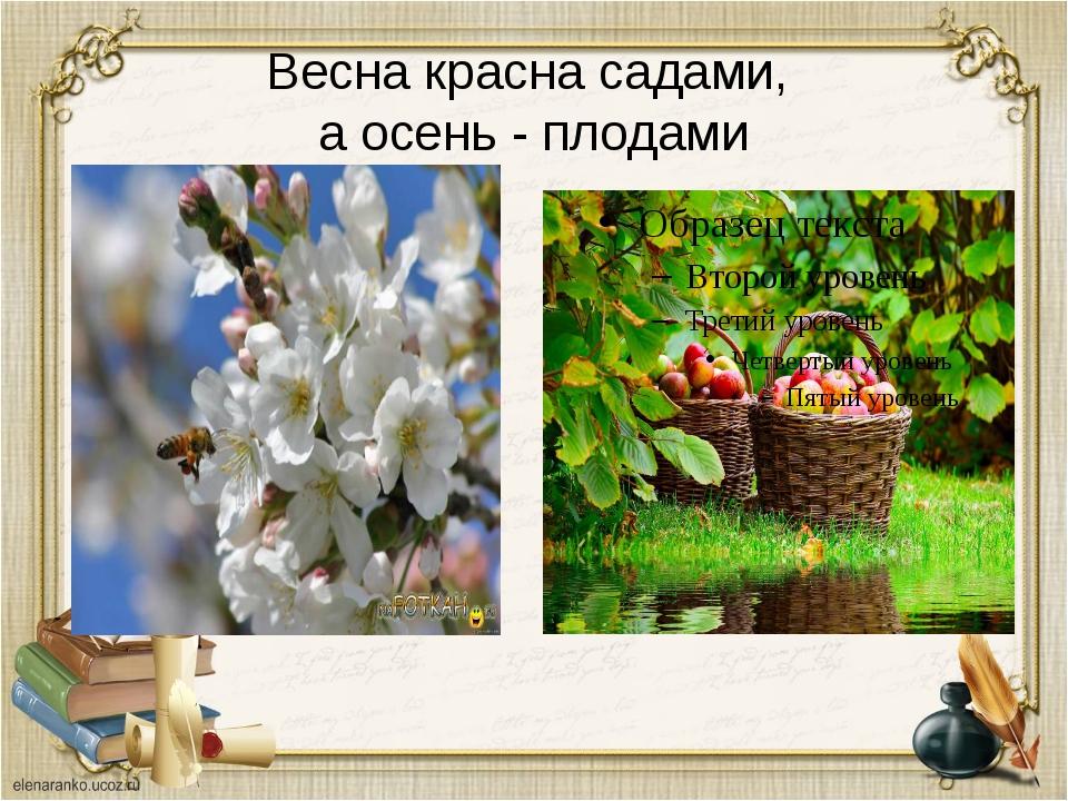 Весна красна садами, а осень - плодами