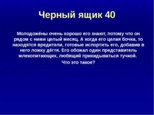 Ребусы и шарады 30 КАНИКУЛЫ