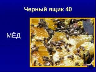 Ребусы и шарады 40 ШАРМАНКА