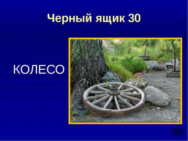 Ребусы и шарады 30