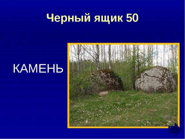 Фразеология 10 МАЛО