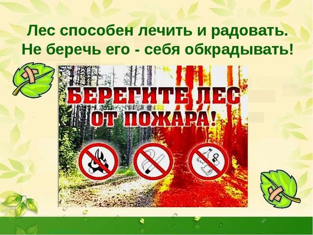 Лес способен лечить и радовать. Не беречь его - себя обкрадывать! http://aida...